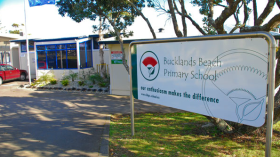 Bucklands Beach Primary School